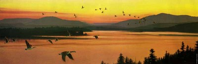 Sounds Of Sunset- Signed By Andrea Lyman – CanvasGiclee – Limited Edition – 250S/N – 12x36