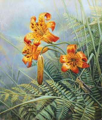 Tiger Lilies And Grasshopper- Signed By Andrea Lyman								 – Canvas Giclee – Limited Edition – 100 S/N – 8 1/2 x 7 1/4