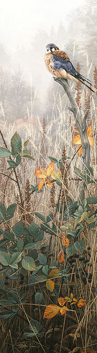 Among The Wild Brambles- Signed By The Artist								 – Paper Lithograph 								 – Limited Edition 								 – 1750 S/N 								 –  								33 3/4 x 9