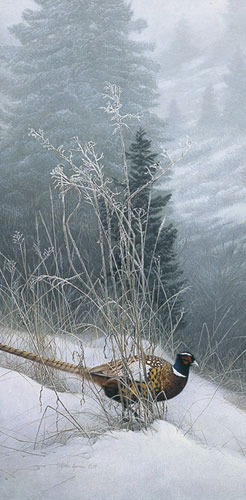 Color In The Snow- Signed By Andrea Lyman – CanvasGiclee – Limited Edition – 100S/N – 30x15