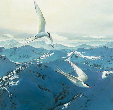 Free Flight- Signed By The Artist – PaperLithograph – Limited Edition – 850S/N – 14 3/4x13 7/8