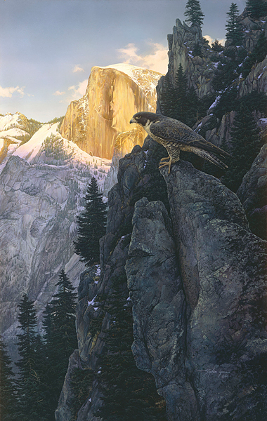 Return Of The Falcon- Signed By The Artist – PaperLithograph – Limited Edition – 1500S/N – 31x19 1/8