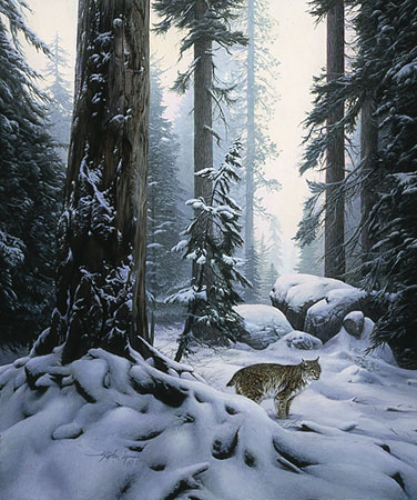 Snow Hunter- Signed By The Artist – PaperLithograph – Limited Edition – 1500S/N – 20x16 3/4
