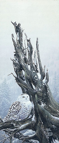 Snowy Throne- Signed By The Artist – PaperLithograph – Limited Edition – 850S/N – 12x5 1/4