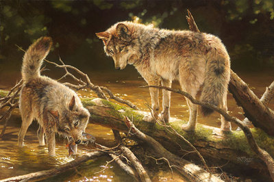 Lucky Catch- Signed By The Artist – CanvasGiclee – Limited Edition – 75S/N – 24x36