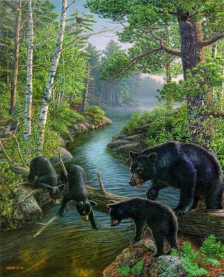 Bear Pause- Signed By The Artist – PaperLithograph  – Limited Edition  – 1250S/N  –  20x16