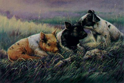Three Little Pigs- Signed By The Artist								 – Canvas Lithograph – Limited Edition – 75 S/N – 7 x 12