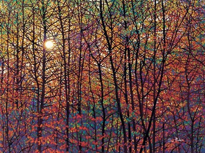 Autumn Sunburst- Signed By The Artist – CanvasGiclee  – Limited Edition  – 50S/N  –  36x48