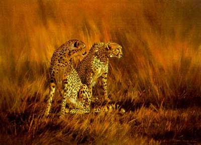 On A Fiery Plain – Cheetahs- Signed By The Artist – PaperLithograph – Limited Edition – 750S/N – 19 1/8x26 –