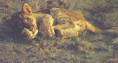 Sunset – Lion Cub- Signed By The Artist – CanvasGiclee  – Limited Edition  – 180S/N  –  13x23