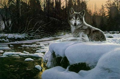 Evening Solitude- Signed By The Artist – PaperLithograph – Limited Edition – 850S/N – 20 3/4x29