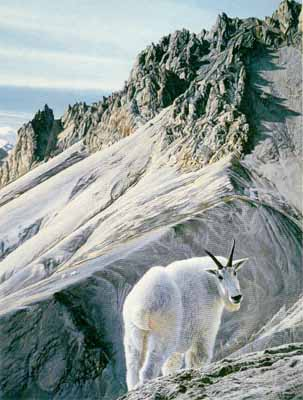 Ramparts – Mountain Goats- Signed By The Artist – PaperLithograph – Limited Edition – S/N – 26 3/4x20