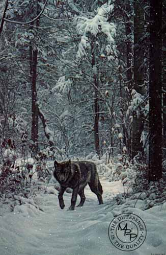 Winter Encounter – Wolf- Signed By The Artist – PaperLithograph – Limited Edition – 950S/N – 30 1/4x20 1/4