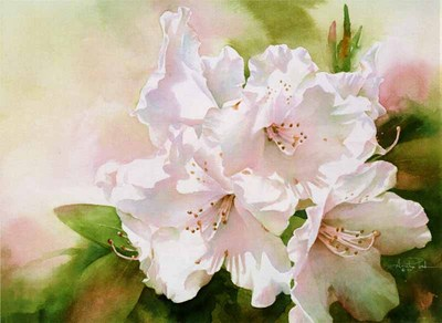 Translucent Rhodies- Signed By The Artist								 – Paper Giclee – Limited Edition – 350 S/N – 10 x 14