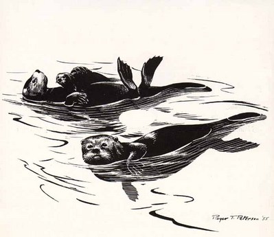 Sea Otters- Signed By The Artist – PaperLithograph – Limited Edition – 950S/N – 9x12