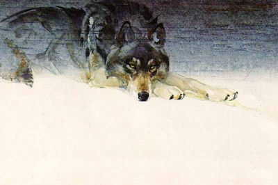 Eyes Of Dusk- Signed By The Artist – PaperLithograph  – Limited Edition  – 550S/N  –  9 5/8x14 3/8