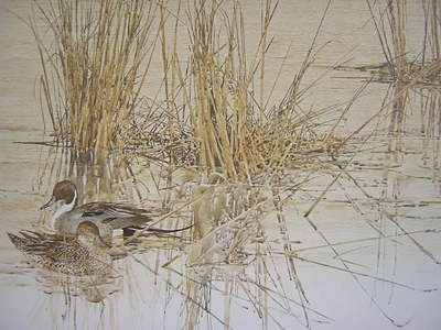 Shelter At Suisun- Signed By The Artist – PaperLithograph  – Limited Edition  – 950S/N  –  19x31