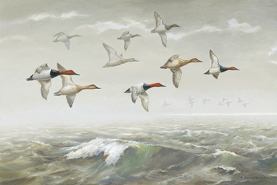 Morning Fog – Canvasbacks- Signed By The Artist – CanvasGiclee  – Limited Edition  – 180S/N  –  22x33