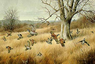 The Old Tree – Bobwhites- Signed By The Artist – PaperLithograph – Limited Edition – 950S/N – 18 3/4x27 1/2