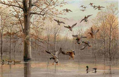 Quiet Reflections- Signed By The Artist – PaperLithograph  – Limited Edition  – 450S/N  –  20 3/4x31