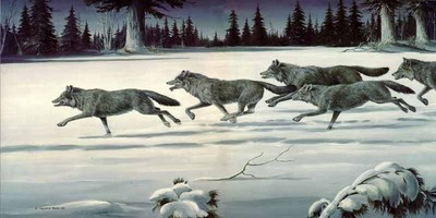 The Chase – Wolf Pack- Signed By The Artist – PaperLithograph  – Limited Edition  – 550S/N  –  15x30