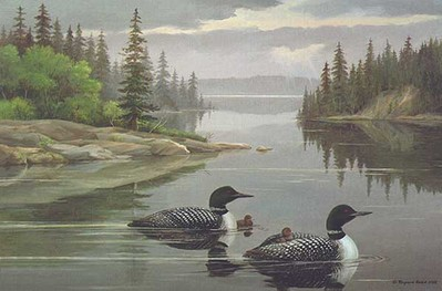 The Family – Loons- Signed By The Artist – CanvasGiclee  – Limited Edition  – 180S/N  –  22x33  –