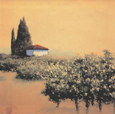 Warm Morning In The Vineyard- Signed By The Artist – CanvasGiclee – Limited Edition – 350S/N – 30x30 1/8