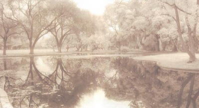 Winter Reflection II (Photograph)- Signed By The Artist								 – Paper Giclee – Limited Edition – 250 S/N – 6 x 11