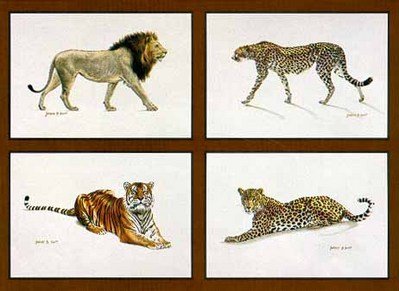 The Adventurer's Collection (4-Piece Set)- Signed By The Artist – PaperLithograph  – Limited Edition  – 950S/N  –  4 1/2x9