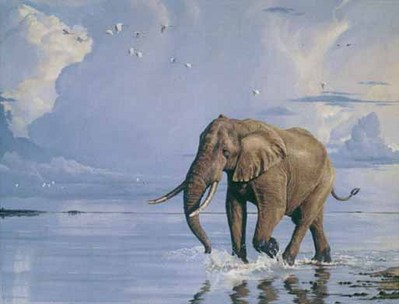 Patrolling The Shore- Signed By The Artist – CanvasGiclee  – Limited Edition  – 50S/N  –  40x52