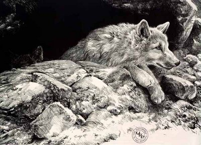Arctic Wolf Pups- Signed By The Artist								 – Paper Lithograph – Limited Edition – 23 A/P – 21 x 33