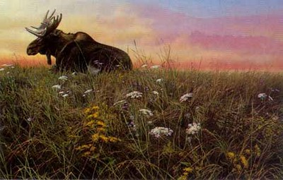 Daybreak – Moose- Signed By The Artist								 – Paper Lithograph – Limited Edition – 56 A/P – 18 x 27
