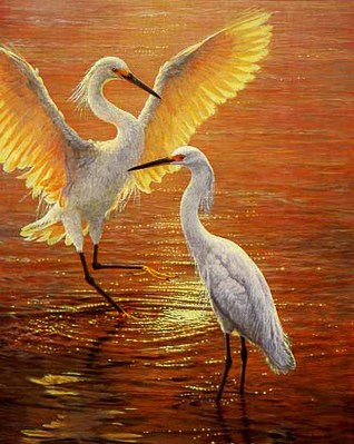 Evening Duet – Snowy Egrets- Signed By The Artist – PaperLithograph – Limited Edition – 1250S/N – 24 3/8x19 1/2