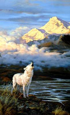 Alpenglow – Arctic Wolf- Signed By The Artist								 – Paper Lithograph – Limited Edition – 950 S/N – 37 3/8 x 24 3/8