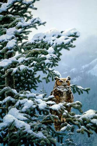 Winter Vigil – Great-Horned Owl- Signed By The Artist								 – Paper Lithograph – Limited Edition – 950 S/N – 34 3/8 x 24