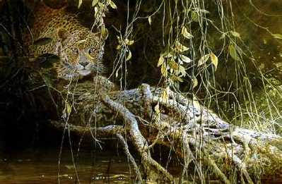 Young Predator – Leopard Cub- Signed By The Artist – PaperLithograph – Limited Edition – 76A/P – 19x28