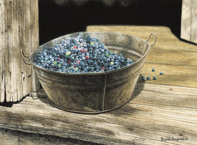 Blueberry Shadows- Signed By The Artist – PaperGiclee  – Limited Edition  – 50S/N  –  13 5/8x18 1/2