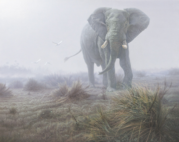 Denizen In The Mist- Signed By The Artist – PaperLithograph  – Limited Edition  – 76A/P  –  23x28 3/4