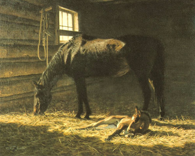 Foal- Signed By The Artist – PaperLithograph  – Limited Edition  – 1000S/N  –  16 1/2x21