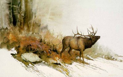 Autumn Challenge – Elk- Signed By The Artist								 – Paper Lithograph – Limited Edition – 950 S/N – 17 5/8 x 29 5/8