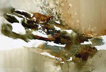 Mountain Sentinel – Cougar- Signed By The Artist – PaperLithograph  – Limited Edition  – 950S/N  –  22 1/2x29  –