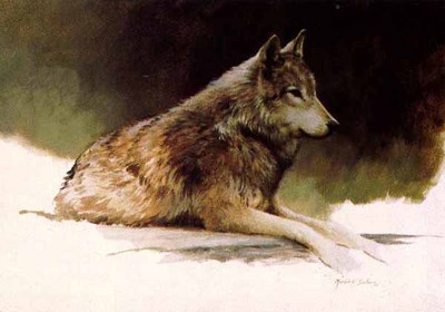 Timber Wolf Study – Companions (2-Piece Set)- Signed By The Artist – PaperLithograph – Limited Edition – 950S/N – 9 1/4x14