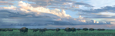 Prairie Thunder- Signed By The Artist								 – Canvas Giclee – Limited Edition – 50 S/N – 20 x 62
