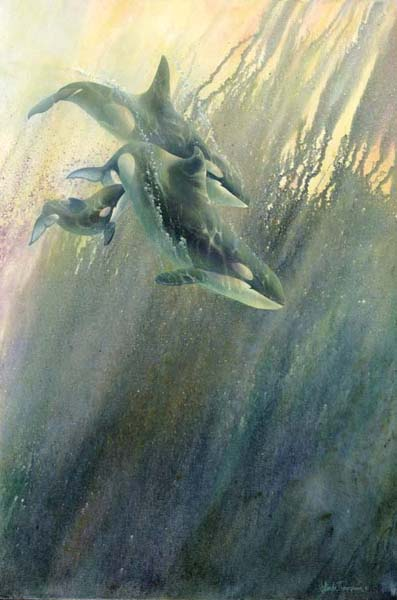 Orca-Stration- Signed By The Artist – CanvasGiclee  – Limited Edition  – 180S/N  –  36x24
