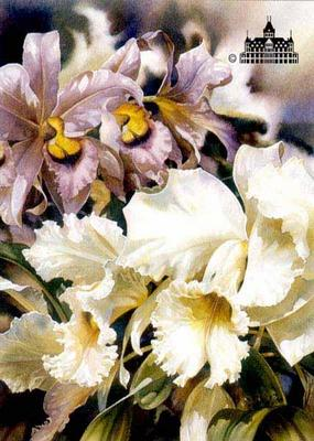 Orchids I- Signed By The Artist – PaperLithograph  – Limited Edition  – 1000S/N  –  26 1/2x18  –