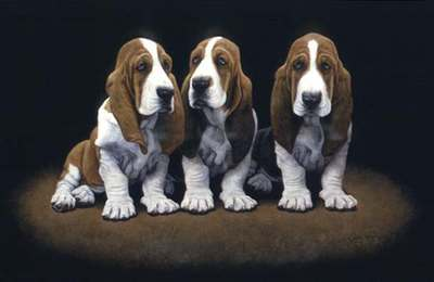 Basset Hound Pups- Signed By The Artist – PaperLithograph – Limited Edition – A/P – 10 5/8x16 1/2