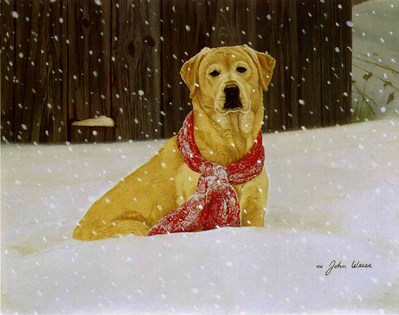 Cold Nose, Warm Heart- Signed By The Artist – PaperLithograph – Limited Edition – 950S/N – 12 1/2x16