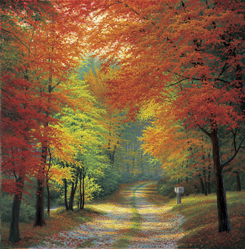 Autumn Trails- Signed By The Artist – CanvasLithograph  – Limited Edition  – 50A/P  –  32x32