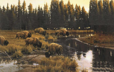 Yellowstone Crossing- Signed By The Artist – CanvasGiclee  – Limited Edition  – 195S/N  –  20x32
